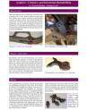 Centaure Buch - Mythen Fakten und Fiktionen